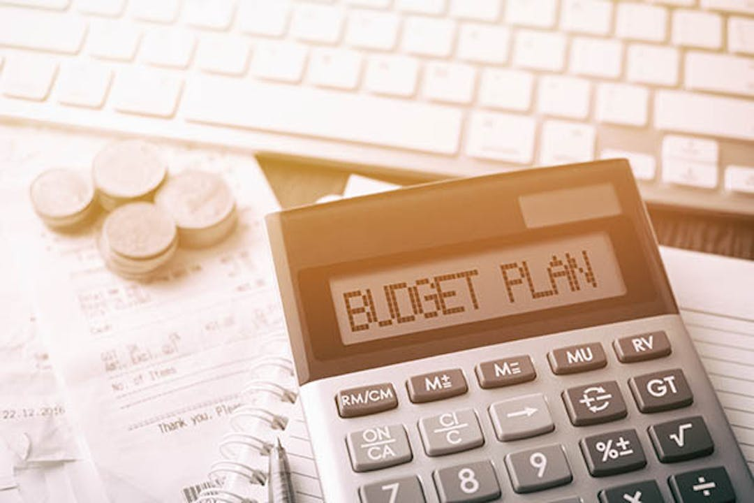 Help the City with Budget Planning!