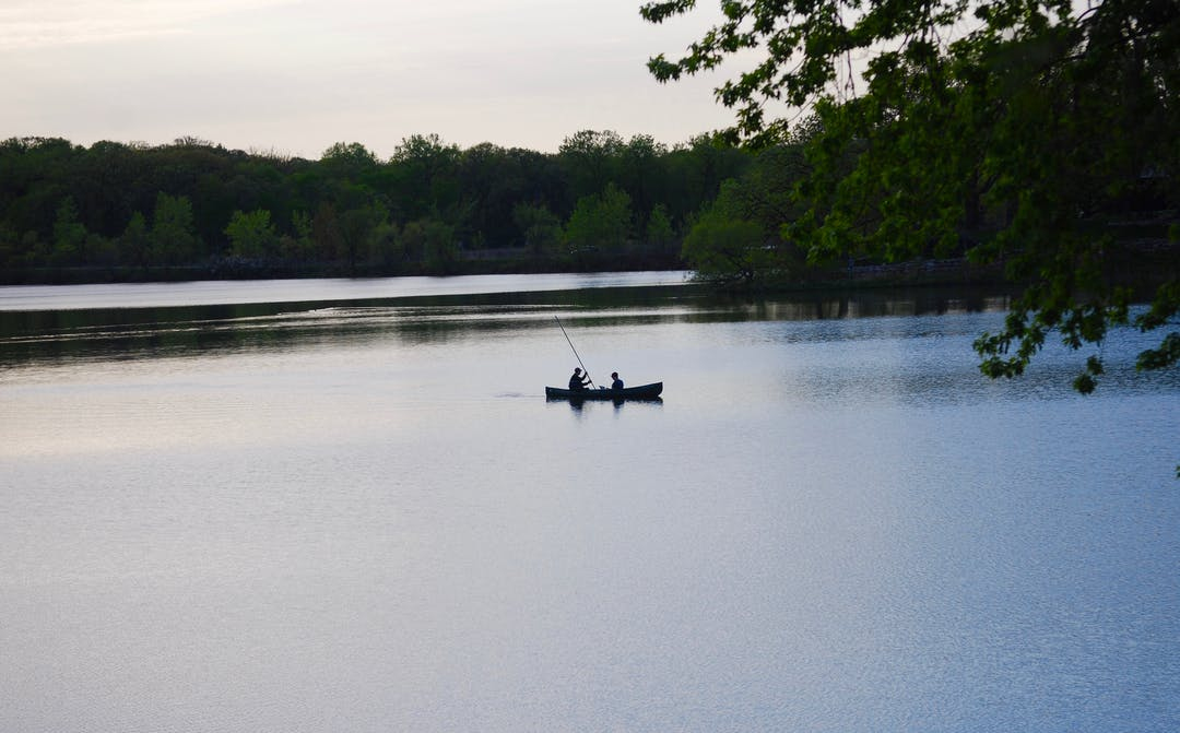 Lake cornelia pic