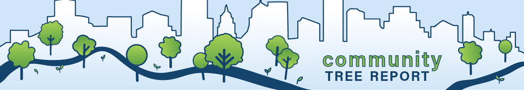 This banner is an illustration featuring Austin's skyline, river, and trees.