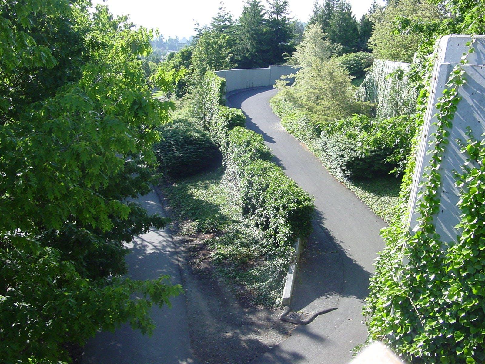 Lid Trail