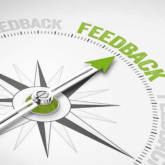 """Compass with an arrow pointing to the word """"Feedback,"""" which is highlighted in green."""
