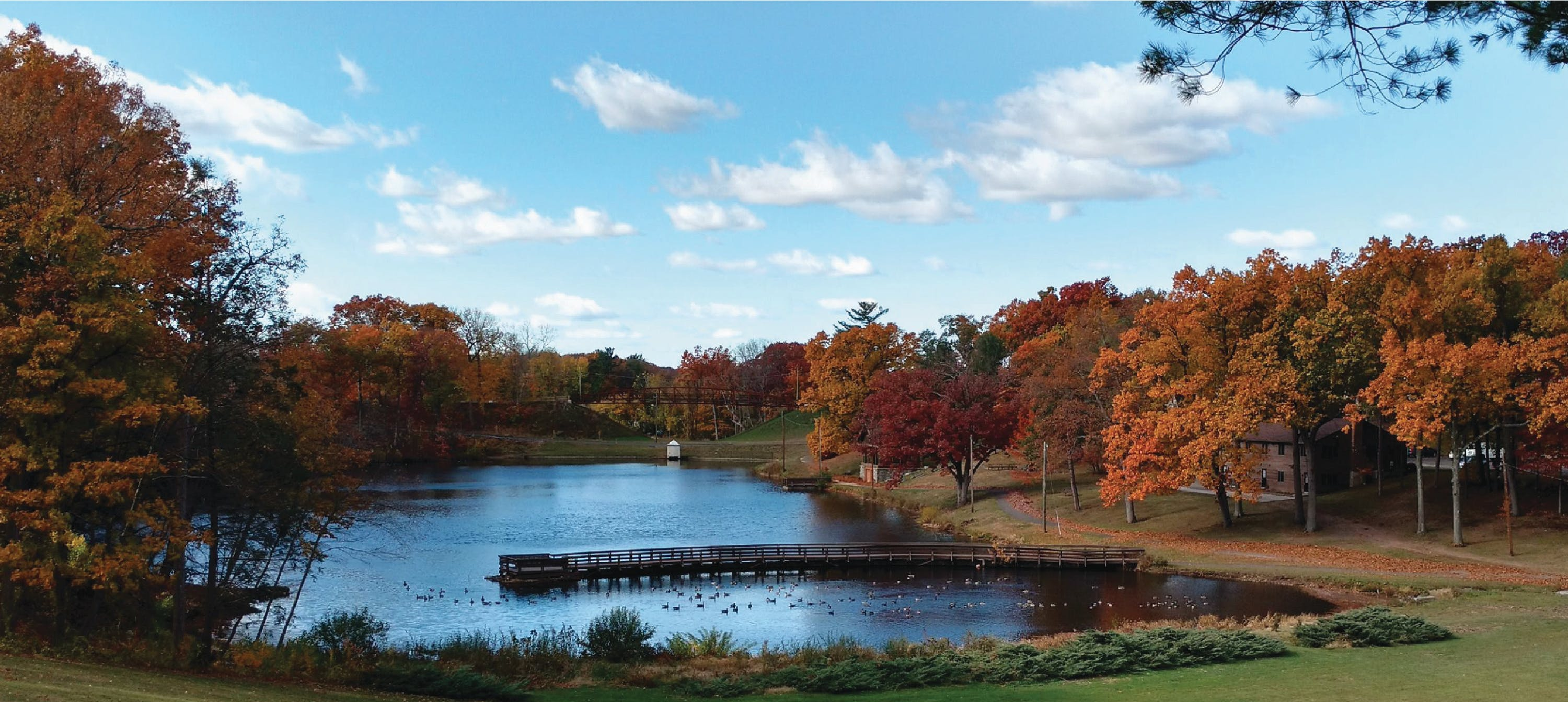 Scenic image of Center Springs Park looking down towards pond. (2016)