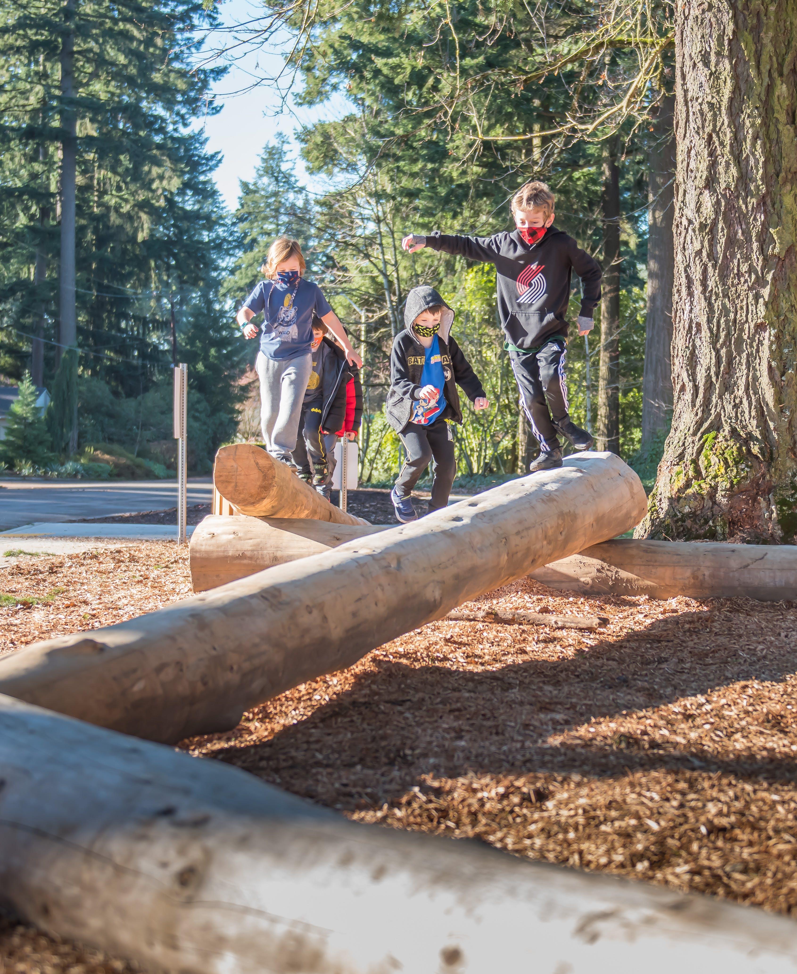 Dubois Park Log Balance.jpg
