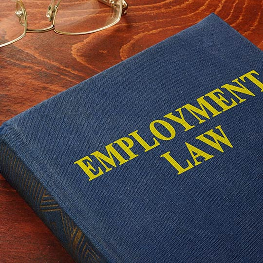 """Book on a table with the title """"Employment Law"""""""