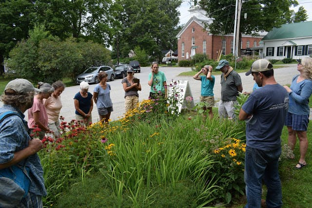 Volunteers who worked on the Pollinator Garden learn about native plants from Annie White.