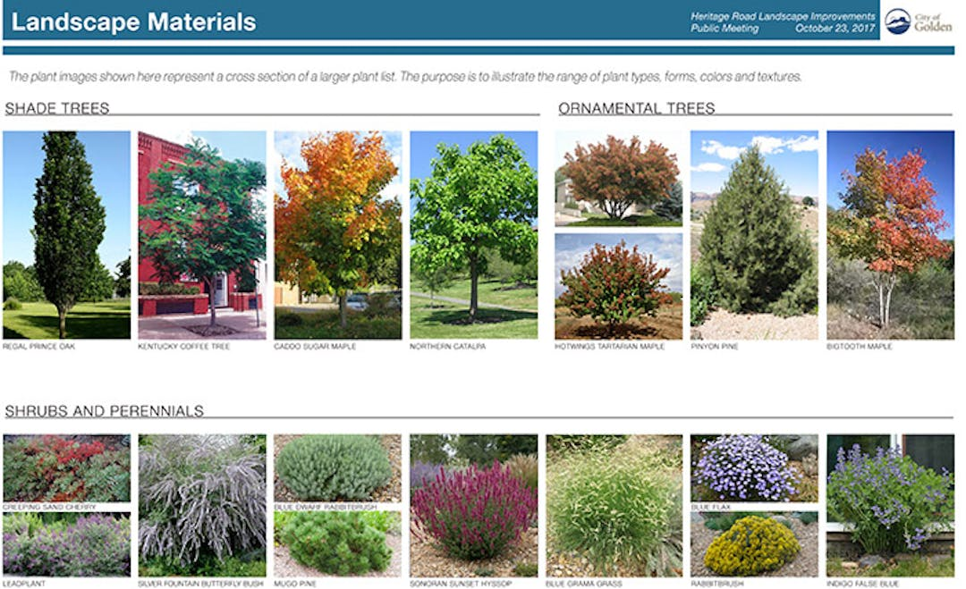 Heritage Road Landscaping Plan City Of Golden Staff
