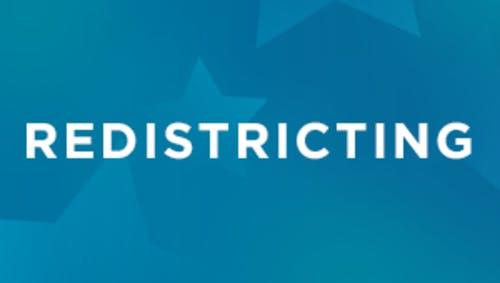 redistricting logo