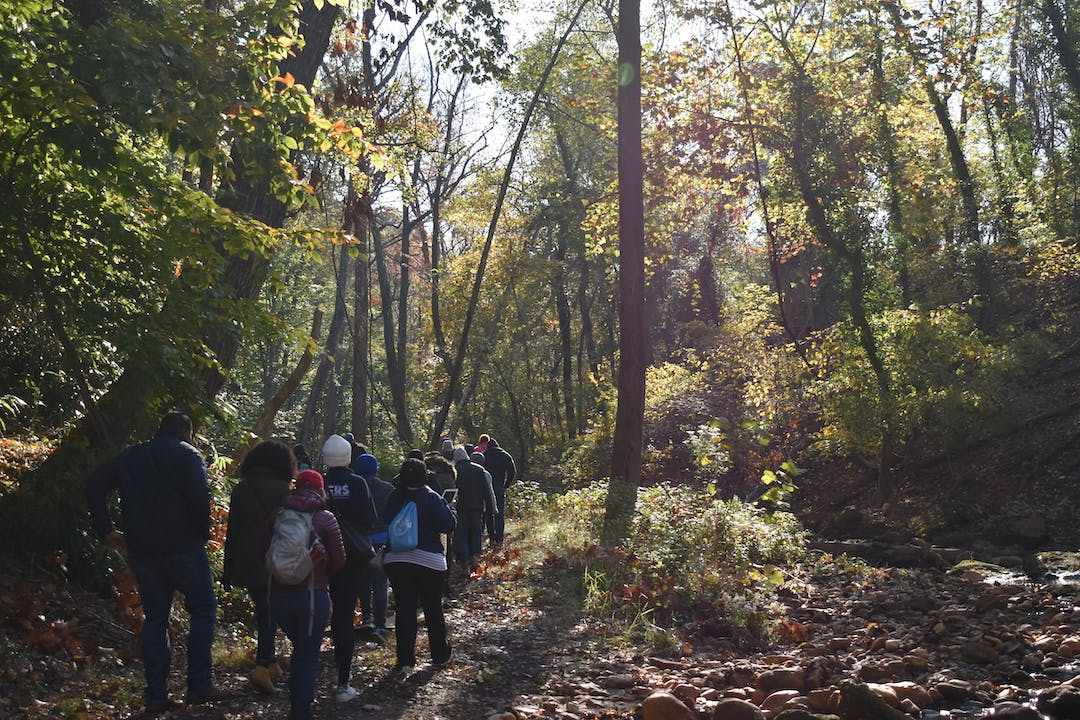 A group of hikers walk along a natural trail in Pope Branch Park with sun shining through the trees and a creek to their right.
