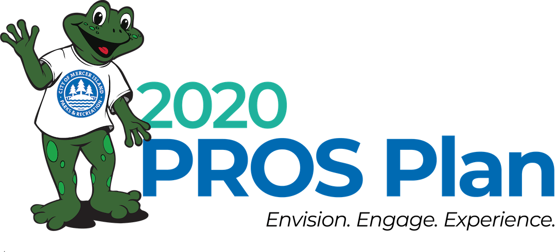A blue and green logo that says 2020 PROS Plan: Envision, Engage, Experience. Logo includes a smiling frog standing up and waving.