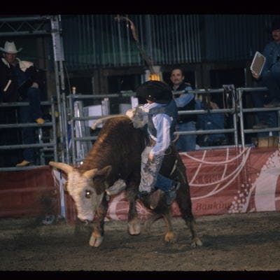 Rodeo in Dobson Ice Arena !