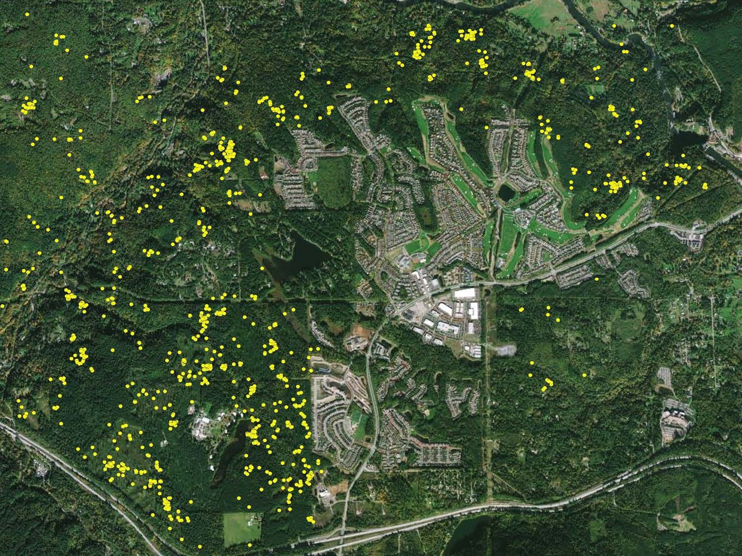 GPS Map of Subadult Male in Snoqualmie Ridge Area