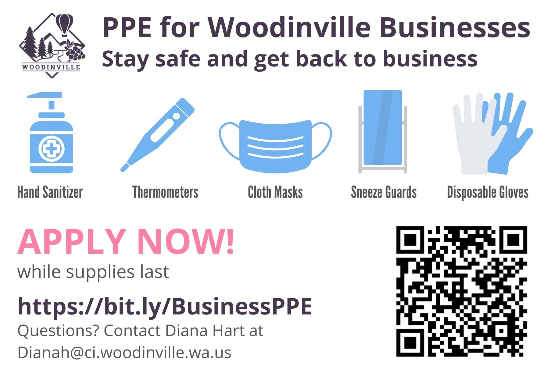 PPE Program Flyer 2.png