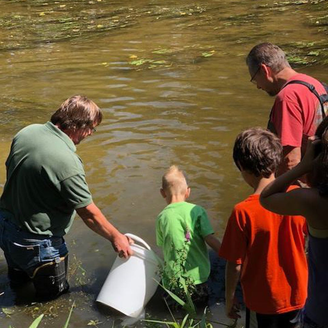 Kids help release sturgeon into the Shiawassee River at Cole Park.