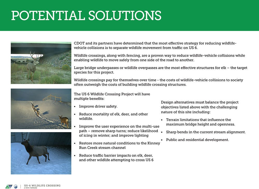 Wildlife Crossing Potential Solutions