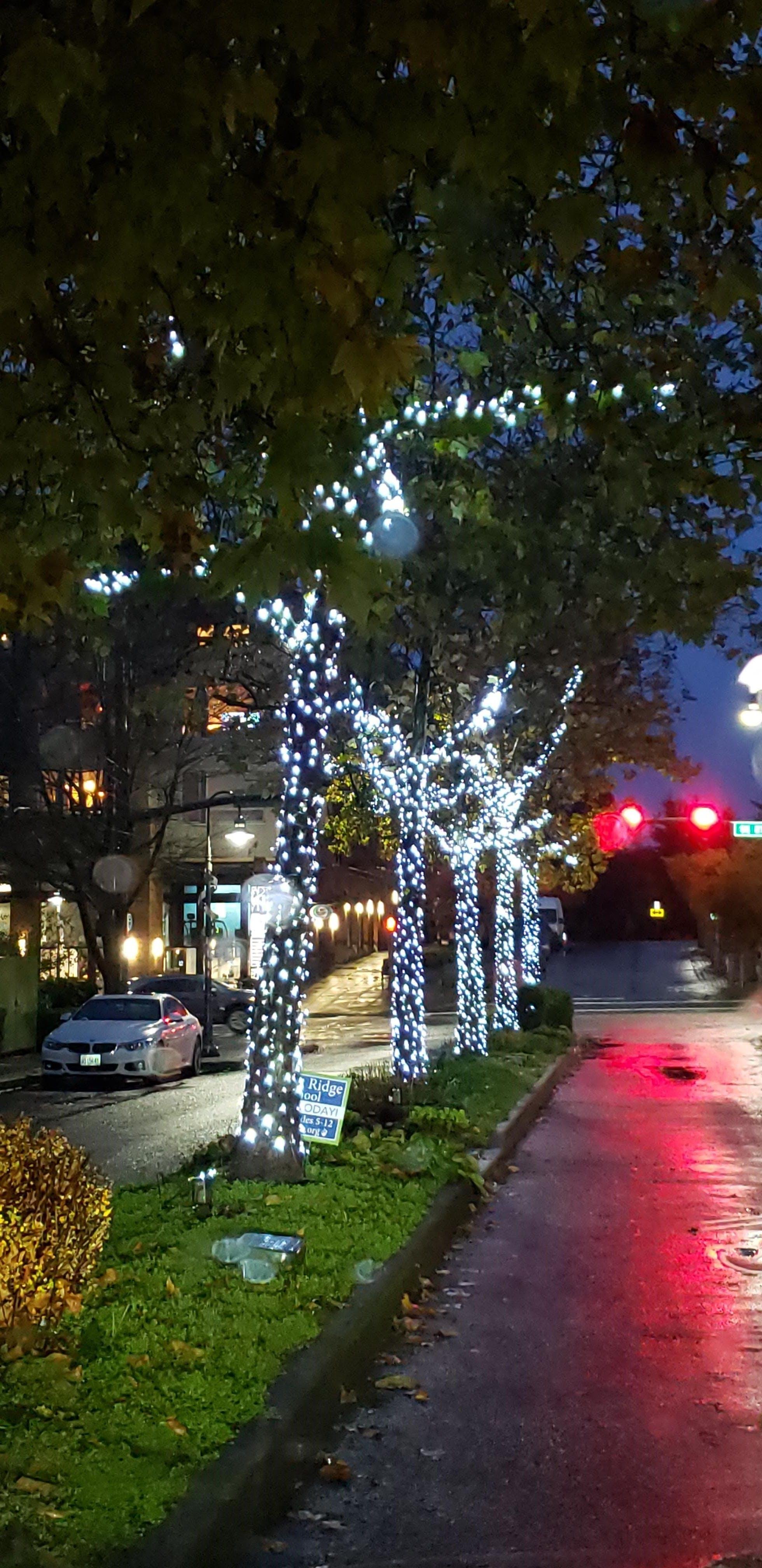 Illuminate MI Installation along 78th Ave SE