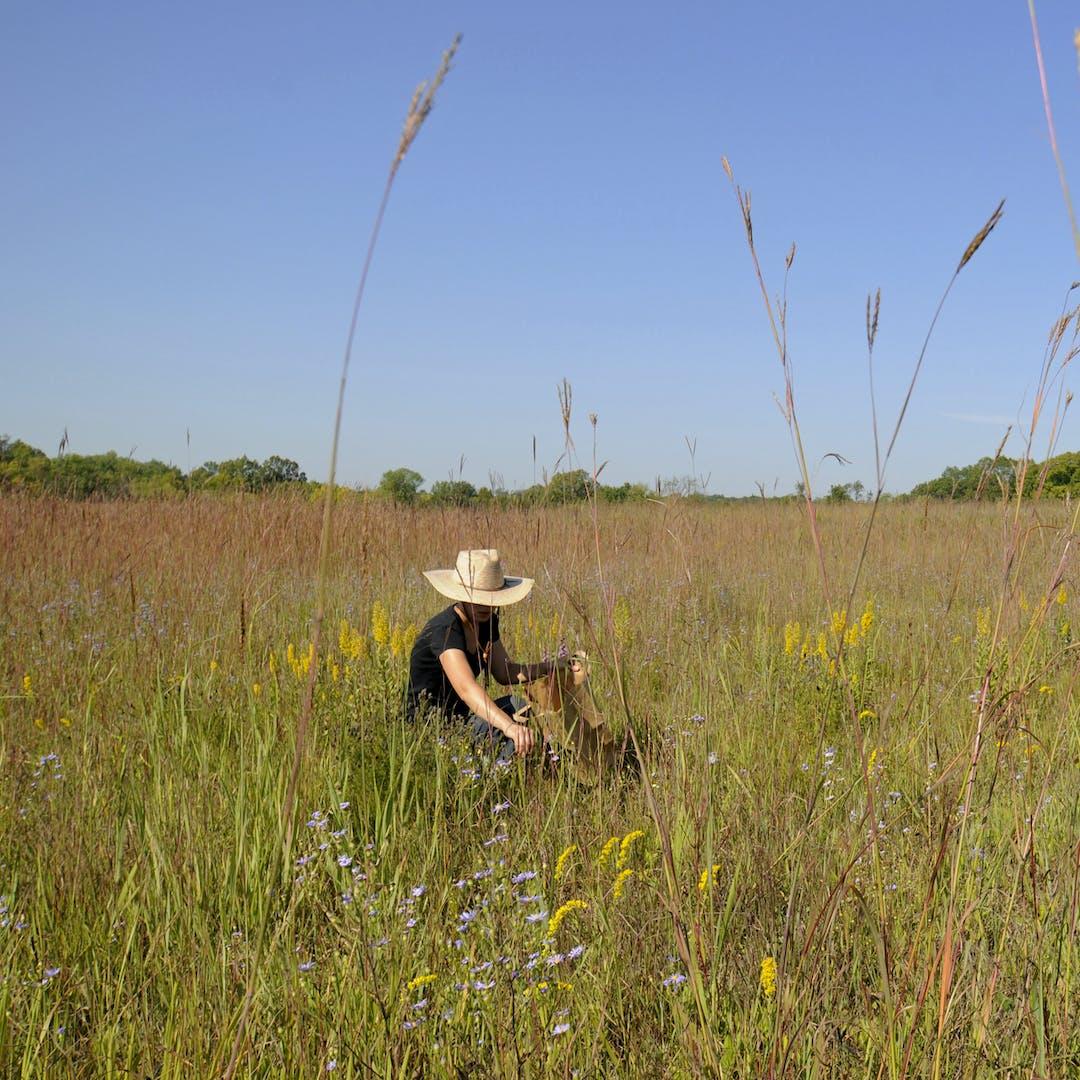 Prairie visitor.