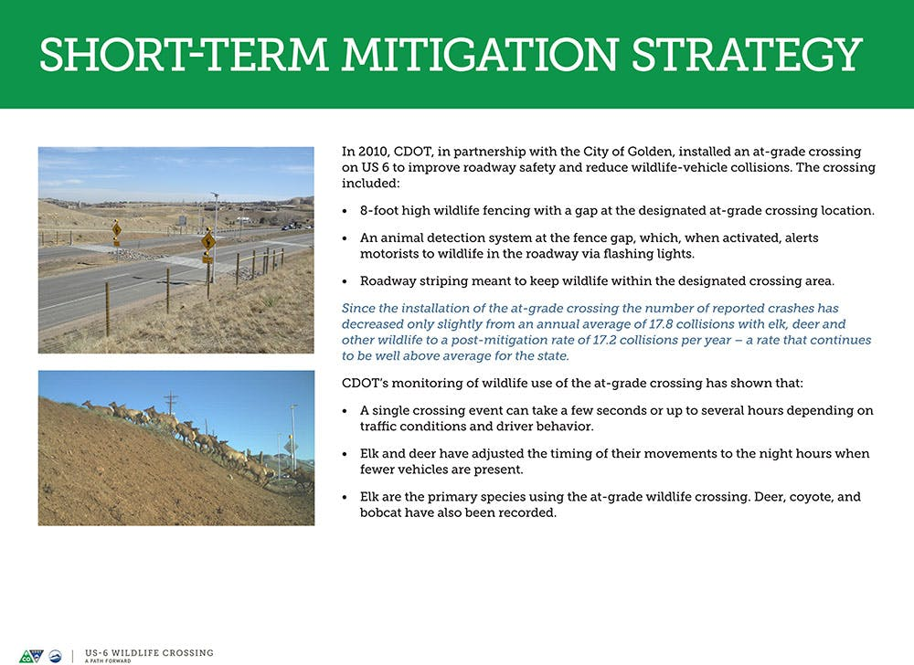 Wildlife Crossing Short-term Mitigation Strategy