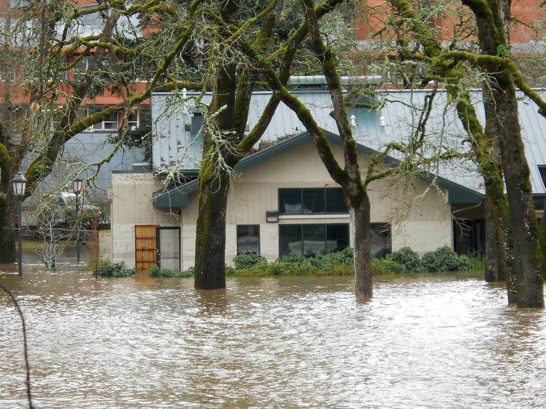 Pringle Hall building and trees during flood with water halfway up their height
