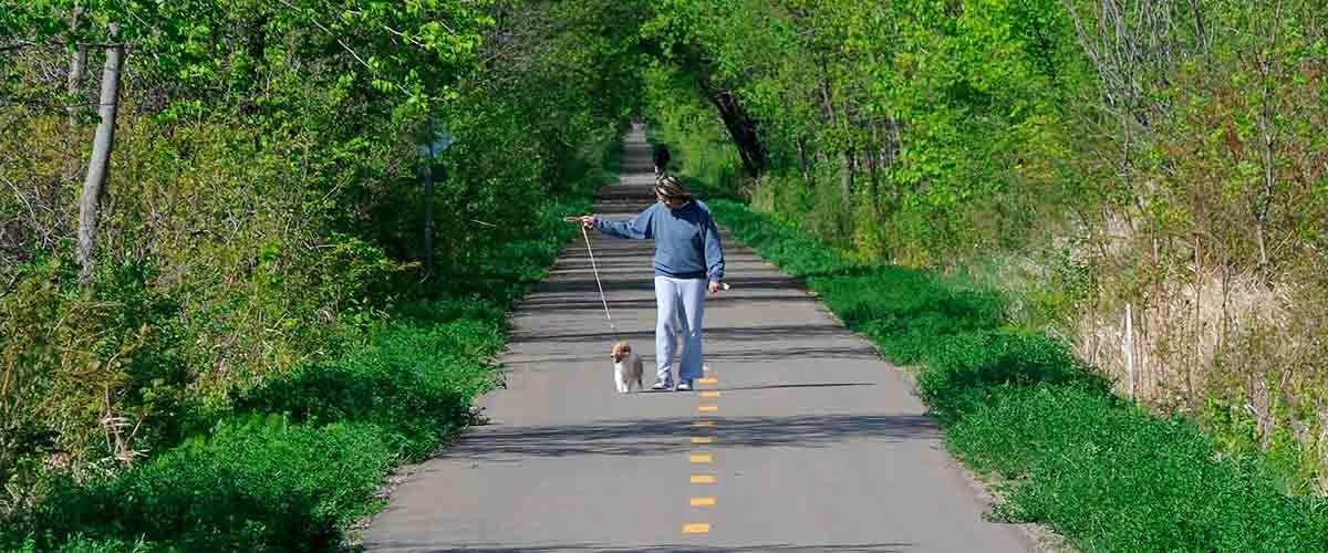 Existing Dakota Rail Regional Trail