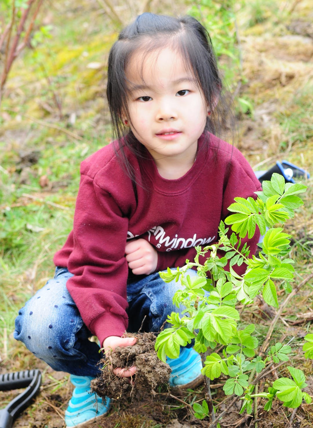 little girl kneeling on the ground and planting a tree